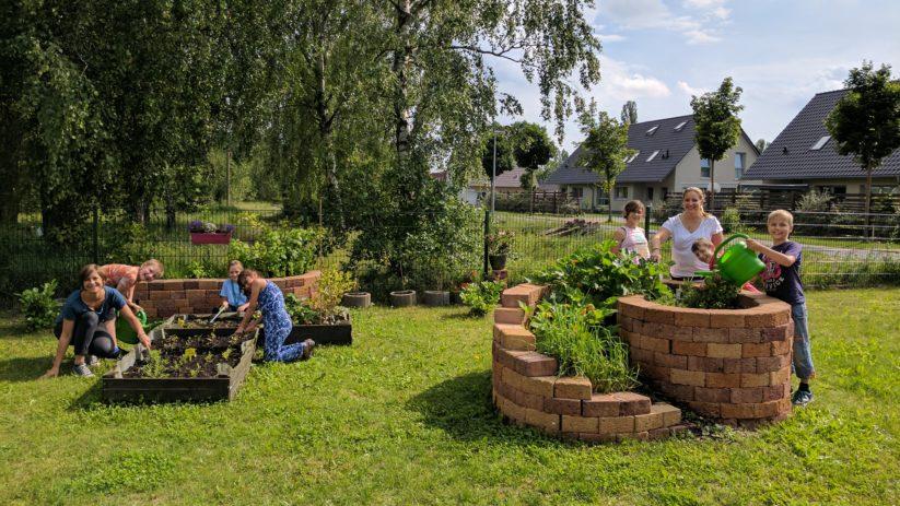 Sensibilisieren für das Anbauen, Pflegen und Ernten von Obst-, Gemüse- und Kräuterarten